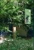 Nature-ville-Toutous